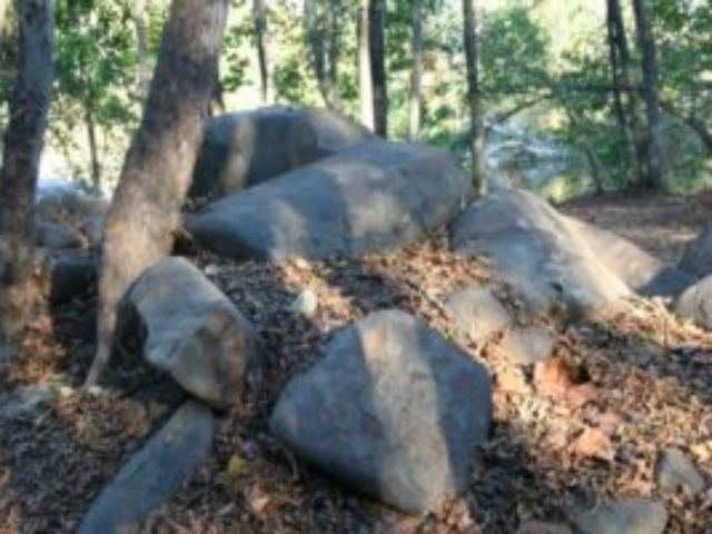 a boulder pile in the foreground with trees on the left and the river peeking through the trees in the background