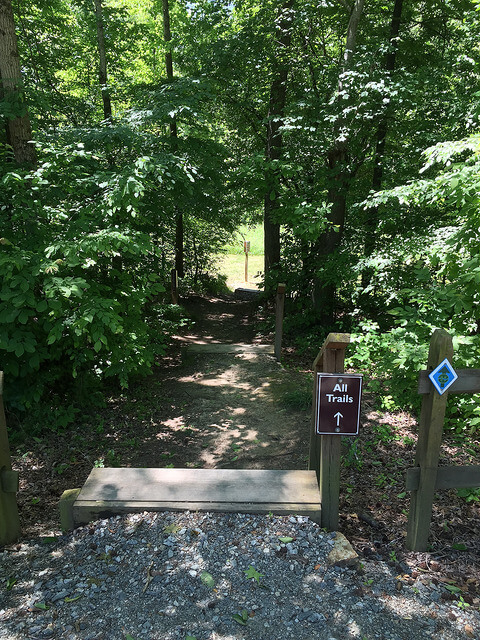 photo of trail entrance at Great Bend Park with wooden steps and sigh pointing to All Trails leading to a trail through trees that opens into a field
