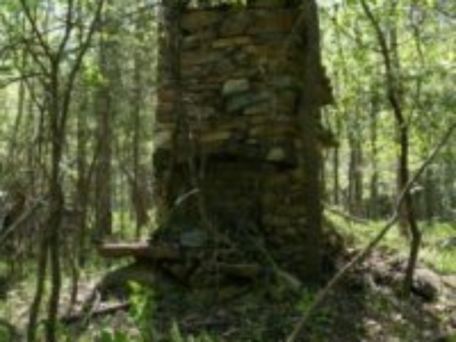 photo of the remains of a stone chimney from the Tickle homestead in the woods