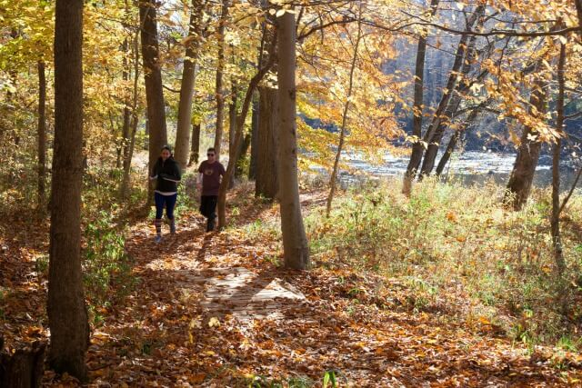 two runners running towards the camera on the trail across a footbridge with fall leaves on the ground and fall color on the trees