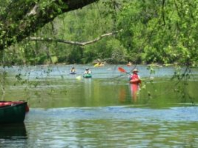 photo looking upriver through trees from the riverbank at five kayakers from the YeeHaw River Paddle